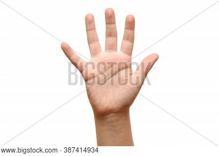 Five Fingers Of Children Hands Close Up Isolatd On White Background.