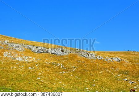 Strunga-bucegi In Carpathian Mountains. Typical Landscape In The Forests Of Transylvania, Romania. G