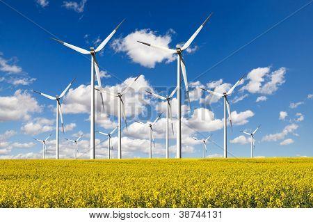 Windturbines  farm