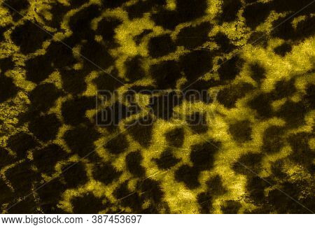 Predator Pattern. Handmade Distressed Swimwear Template. Reptile Leather Animal Print. Gold Or Yello