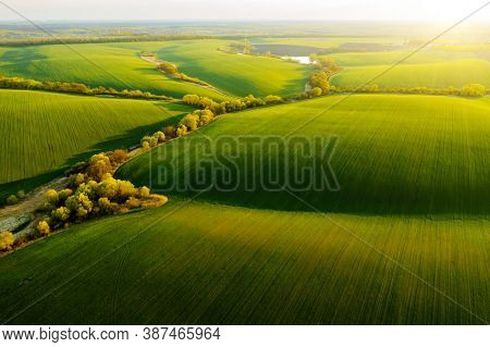 Fantastic aerial photography of green wavy field in sunny day. Top view drone shot. Agricultural area of Ukraine, Europe. Concept photo of agrarian industry. Artistic wallpaper. Beauty of earth.