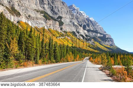 Scenic Icefields park way with fall foliage near Jasper town in Alberta, Canada