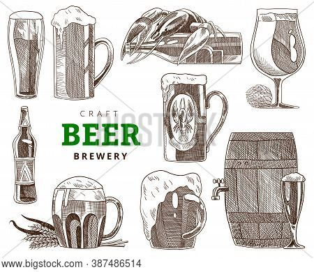 Collection Of Beer Mugs, Glass And Bottles. Craft Beer Party, Vintage Vector Engraving Illustration.