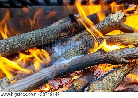 Burning Log Of Wood, Embers On Grill. Close Up.