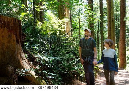 Family Of Two, Father And Son, Hiking And Enjoying Lush Rainforest Of Pacific Northwest, Washington