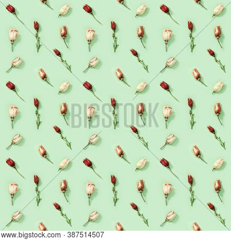 Seamless Regular Creative Pattern From Natural Dry Flowers Eustoma On Soft Green. Floral Design, Pri