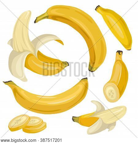 Set Of Various Cartoon Bananas. Whole, Ripe, Banana Slices. A Tropical Juicy Treat. Vector Flat Obje