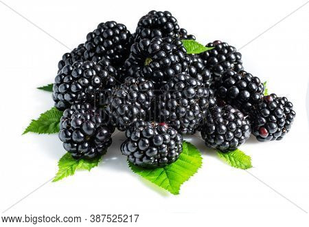 Blackberries with blackberry leaves isolated on a white background.
