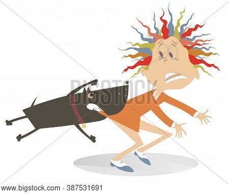 Aggressive Dog And Frightened Woman Illustration. Aggressive Dog Grabs The Frightened Young Woman By