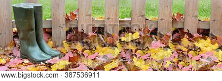 Rubber Boots In The Yellow And Red  Foliage Covered  The Ground In Front Of Wooden Fence In A Garden