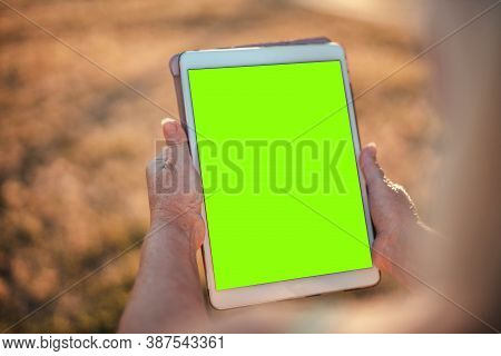 Close Up Of Female Hands Holding Mockup Gadget Tablet With Blank Screen Chroma Key While Sitting In