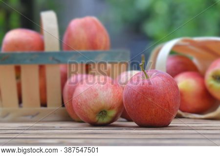 Group Of Red Apples In Little Baskets On A Wooden Table In Garden