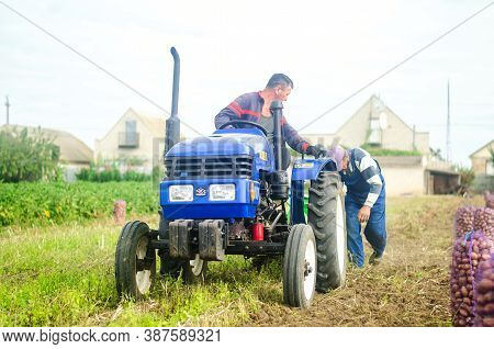 Kherson Oblast, Ukraine - September 19, 2020: Farm Workers On A Tractor Dig Out Potatoes. Harvesting