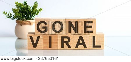 Gone Viral Motivation Text On Wooden Blocks Business Concept White Background. Front View Concepts,