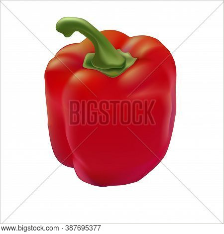 Vector Realistic Illustration Of Red Bell Pepper. Isolated Image Of Food.