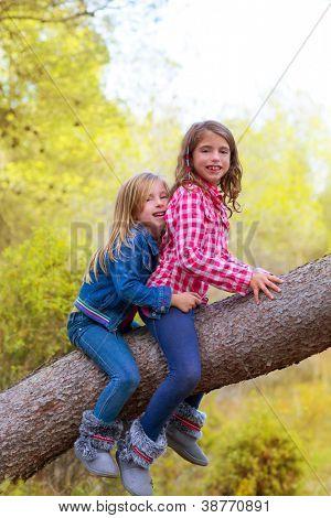children friends girls climbing to a pine tree trunk in golden forest