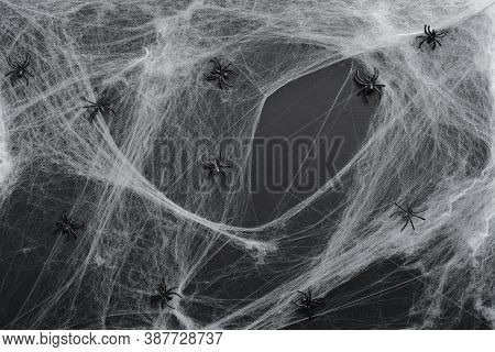 Creepy Halloween Spiderweb And Spiders On Black Background. Flat Lay Composition, Top View. Hallowee