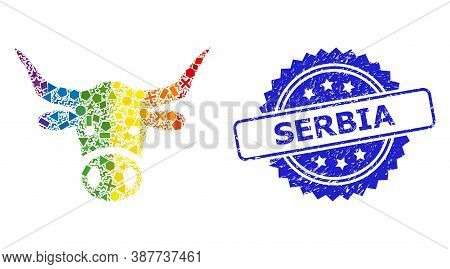 Spectrum Vibrant Vector Cow Head Mosaic For Lgbt, And Serbia Unclean Rosette Seal. Blue Stamp Seal H