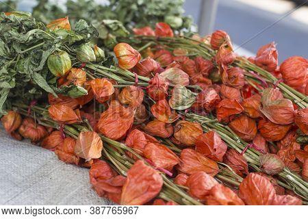 Gardenia Seeds Fruit On Sale In Market.