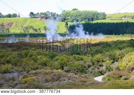 Pohutu Geyser In The Whakarewarewa Thermal Valley, Rotorua, In The North Island Of New Zealand. Pohu