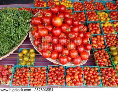 Basil, Vine, Grape And, Cherry Tomatoes In A Variety Of Colors In Little Plastic Boxes Plus Strawber