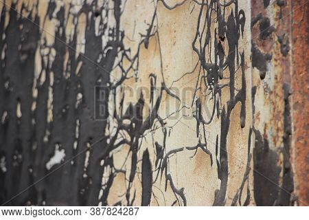 Beige Painted Black Board Showing Crackled Paint