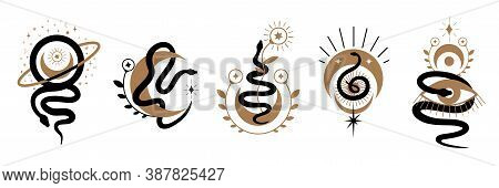 Magic Snake With Moon, Star And Crescents. Mystical Symbols In A Trendy Minimalist Style On A Light