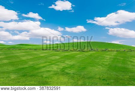 Green Field And Blue Sky With Light Clouds,image Of Green Grass Field And Bright Blue Sky. Plain Lan