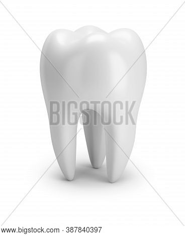 Tooth. Three Roots As It Should Be In A Normal Tooth. 3d Image. White Background.