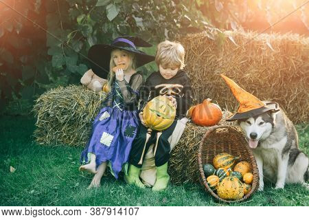 Halloween Scene With Cute Children. Children Sister And Brother With Pumpkin Dressed Like Skeleton A