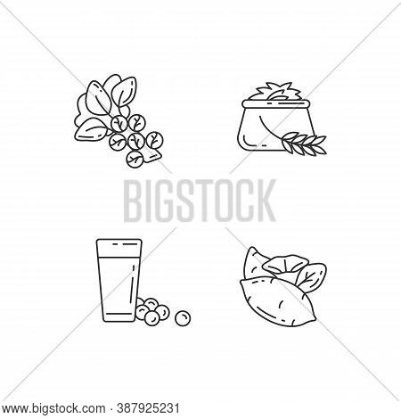 Health Vegetables Types Pixel Perfect Linear Icons Set. Eco Brussels Sprouts. Organic Soy Milk. Cust