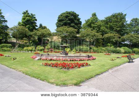 Garden. Garden Art. Garden Design. Garden Landscape