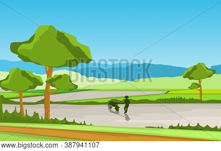 Asian Farmer Cultivating Rice Field Paddy Plantation Agriculture Illustration
