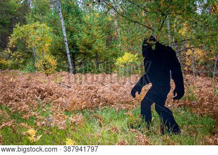 Bigfoot Sighting. Black Silhouette Of Bigfoot Cutout At A State Park In Northern Michigan.