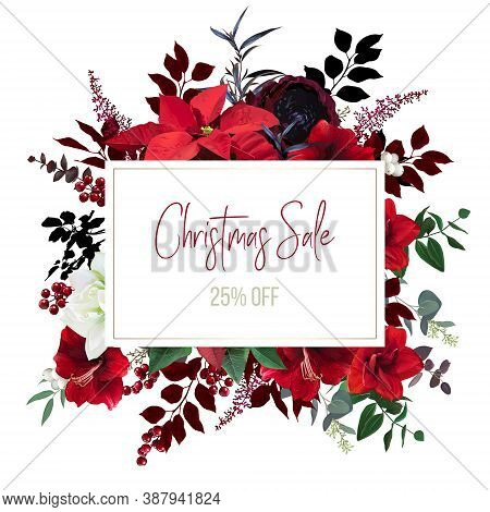 Christmas Red Poinsettia, Amaryllis, Ranunculus Vector Design Frame. New Year Online Sale Banner. Wi