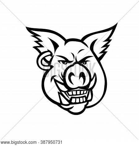 Mascot Black And White Illustration Of Head Of A Pink Wild Pig, Boar Or Hog Wearing An Earring Smili