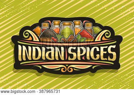 Vector Logo For Indian Spices, Dark Sign Board With Illustration Of Set Indian Dry Organic Seasoning