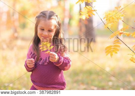 Cute Little Girl In Autumn Park With Orange And Yellow Color Leaves