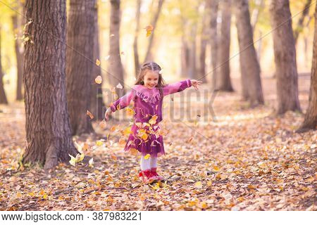 Cute Little Girl In Autumn Park Throw Up Yellow Color Leaves