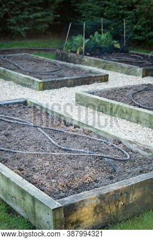 Preparing A Uk Kitchen Garden In Spring Or Winter, With Freshly Dug Soil And Soaker Hose Irrigation