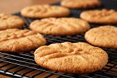 Freshly baked peanut butter cookies on cooling rack.  Macro with extremely shallow dof.  Selective f