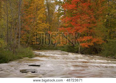 Brandywine Falls River In Autumn