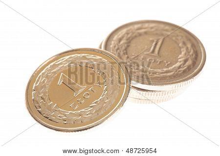 Polish Money Isolated
