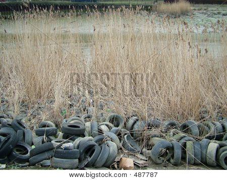 Disregarded Tyres