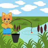 nice fishing cat on pond on summer poster