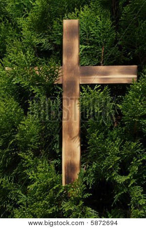 Wooden Cross on Conifer
