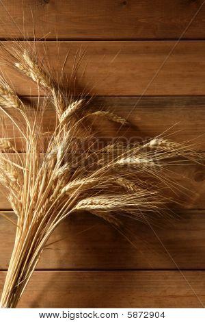 Ear Golden Wheat Spike Over Wooden Background