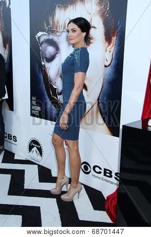 LOS ANGELES - JUL 16:  Madchen Amick at the 'Twin Peaks - The Entire Mystery' Blu-Ray/DVD Release Party And Screening at the Vista Theater on July 16, 2014 in Los Angeles, CA