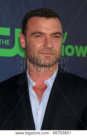 LOS ANGELES - JUL 17:  Liev Schreiber at the CBS TCA July 2014 Party at the Pacific Design Center on July 17, 2014 in West Hollywood, CA
