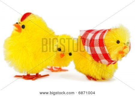 Kid Chick Is Sad About Dispute Of Mommy And Daddy Chick